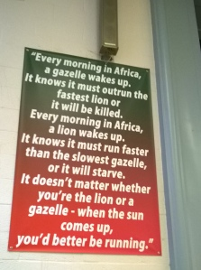 lion_gazelle poster